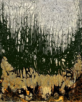 Chemigrams by Nolan Preece