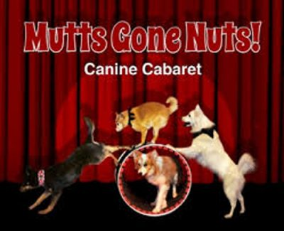 Saturday Kids: Mutts Gone Nuts