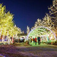 Main Street Christmas Light Extravaganza