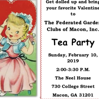 Valentine Tea Party