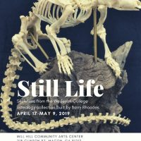 Still Life Exhibition Reception
