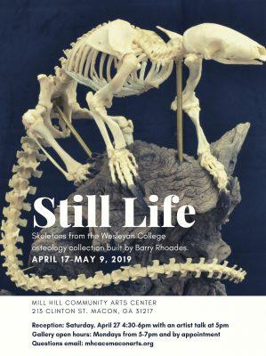 Still Life Exhibition Reception