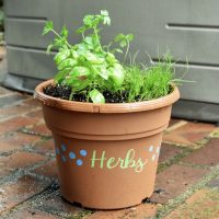 Herb Planter Workshop