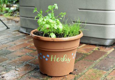 Herb Planter Workshop