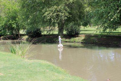Central City Park Pond Statue
