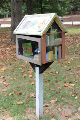Little Libraries - Tatnall Square Park