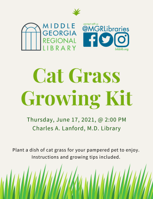 Happy Tails To You! Cat Grass Growing Kit