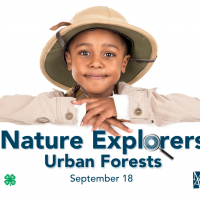 Nature Explorers: Urban Forests