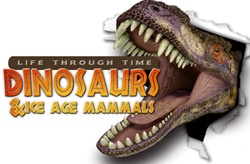 Life Through Time: Dinosaurs & Ice Age Mammals