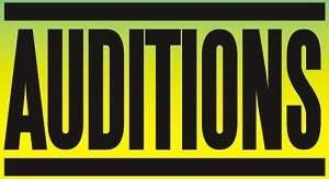 Auditions for Macon Symphony Youth Orchestra's 2012-13 Season