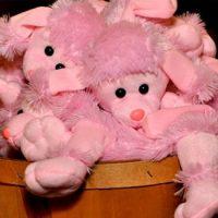 Sip, See & Shop in Pink