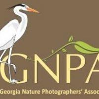 Georgia Nature Photographers' Association