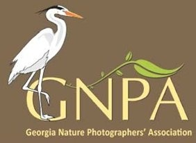 Georgia Nature Photographers' Association