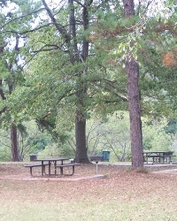Macon-Bibb County Parks and Recreation