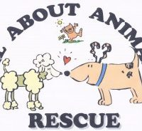 All About Animals Rescue No Kill Shelter